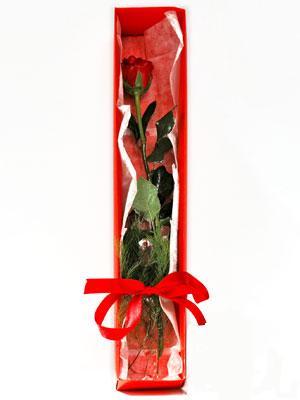 Mardin yurtiçi ve yurtdışı çiçek siparişi  1 adet kutuda gül