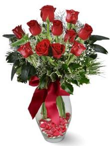 9 adet gül  Mardin internetten çiçek satışı  kirmizi gül