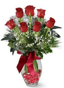 Mardin internetten çiçek siparişi  7 adet kirmizi gül cam vazo yada mika vazoda
