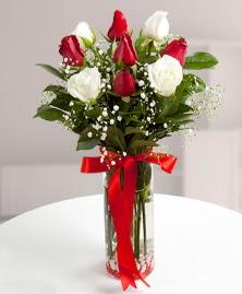 5 kırmızı 4 beyaz gül vazoda  Mardin cicekciler , cicek siparisi