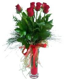 vazo içerisinde 5 kırmızı gül  Mardin güvenli kaliteli hızlı çiçek