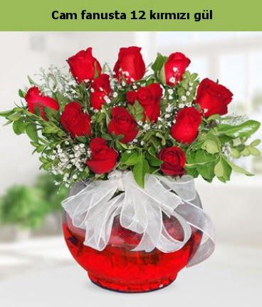 Cam içerisinde 12 adet kırmızı gül  Mardin internetten çiçek satışı