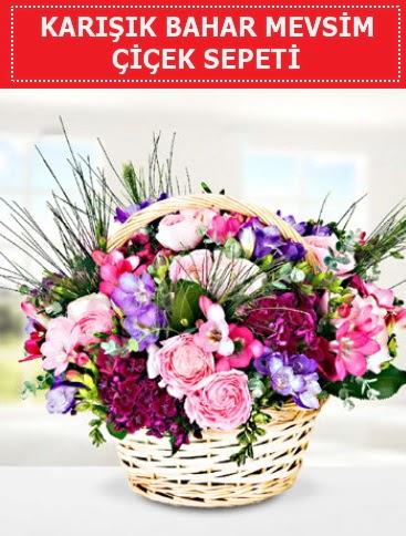 Karışık mevsim bahar çiçekleri  Mardin ucuz çiçek gönder