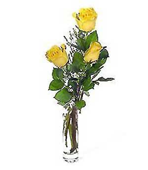 Mardin internetten çiçek siparişi  3 adet kalite cam yada mika vazo gül