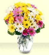 Mardin internetten çiçek siparişi  mevsim çiçekleri mika yada cam vazo