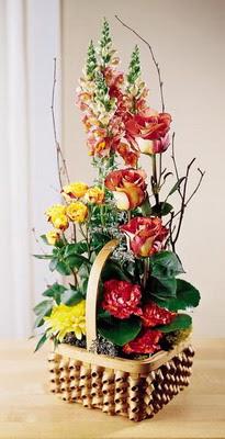 Mardin çiçek , çiçekçi , çiçekçilik  aslan agzi gül ve patlardan tanzim
