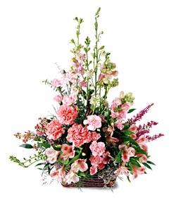 Mardin ucuz çiçek gönder  mevsim çiçeklerinden özel