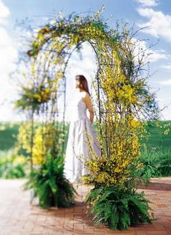 Mardin internetten çiçek satışı  güller ve mevsim çiçegi