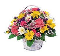 Mardin çiçek , çiçekçi , çiçekçilik  mevsim çiçekleri sepeti özel