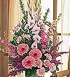Mardin hediye sevgilime hediye çiçek  Tanzim Mevsim çiçeklerinden