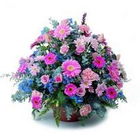 Mardin çiçek servisi , çiçekçi adresleri  mevsim çiçekleri sepeti çiçek yolla için önerilir