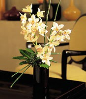 Mardin çiçekçiler  cam yada mika vazo içerisinde dal orkide