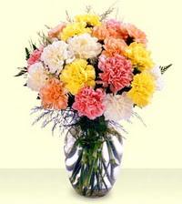 Mardin online çiçek gönderme sipariş  cam yada mika vazoda renkli karanfiller