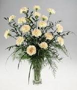 Mardin internetten çiçek satışı  cam yada mika vazoda  krem karanfiller