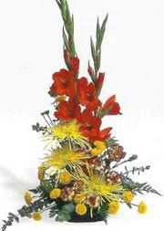 Mardin hediye sevgilime hediye çiçek  glayör ve mevsim çiçekleri
