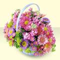 Mardin yurtiçi ve yurtdışı çiçek siparişi  bir sepet dolusu kir çiçegi  Mardin çiçek gönderme sitemiz güvenlidir