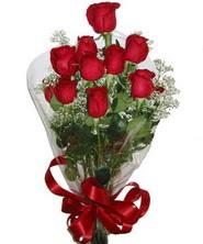 9 adet kaliteli kirmizi gül   Mardin online çiçekçi , çiçek siparişi