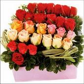 15 adet renkli gül ve cam   Mardin çiçekçi mağazası