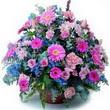 karisik mevsim kir çiçekleri  Mardin çiçek gönderme sitemiz güvenlidir