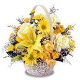 sadece sari çiçek sepeti   Mardin çiçek gönderme sitemiz güvenlidir