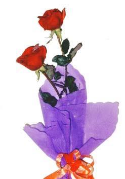 2  adet kirmizi gül buketi   Mardin çiçek , çiçekçi , çiçekçilik