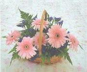 gerbera çiçeklerinde sepet   Mardin çiçek yolla