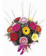 karisik gerbera çiçekleri  Mardin çiçek yolla