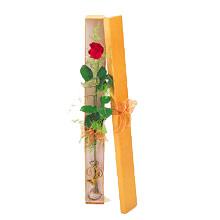 ince  kutuda  1  gül   Mardin çiçek yolla