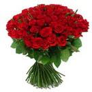 101 adet kirmizi gül sade  Mardin çiçek yolla