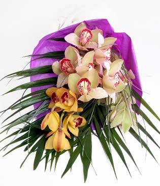Mardin cicekciler , cicek siparisi  1 adet dal orkide buket halinde sunulmakta