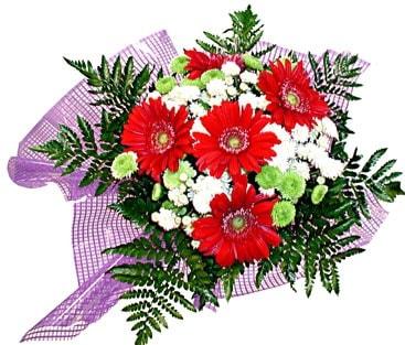 gerbera ve krizantem demeti  Mardin çiçekçi mağazası