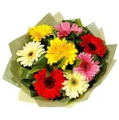 9 adet karisik gerbera demeti  Mardin çiçek mağazası , çiçekçi adresleri
