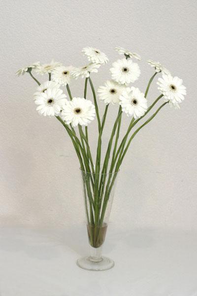 Mardin çiçek mağazası , çiçekçi adresleri  cam vazo içerisinde 17 adet sade gerbera