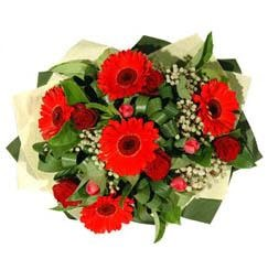 Mardin ucuz çiçek gönder   5 adet kirmizi gül 5 adet gerbera demeti