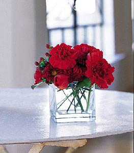 Mardin ucuz çiçek gönder  kirmizinin sihri cam içinde görsel sade çiçekler