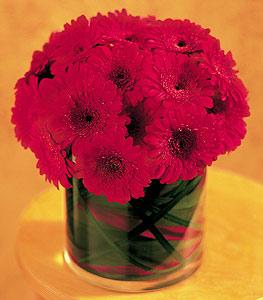Mardin ucuz çiçek gönder  23 adet gerbera çiçegi sade ve sik cam içerisinde