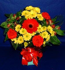 Mardin ucuz çiçek gönder  sade hos orta boy karisik demet çiçek