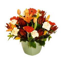 mevsim çiçeklerinden karma aranjman  Mardin çiçek yolla , çiçek gönder , çiçekçi