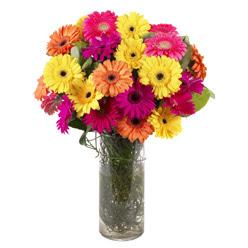 KARISIK GERBERALARDAN CAM VAZO TANZIMI  Mardin güvenli kaliteli hızlı çiçek