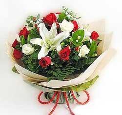 güller ve kazablanklardan görsel bir buket  Mardin internetten çiçek satışı