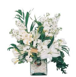 Mardin internetten çiçek siparişi  sadece beyazlardan olusmus mevsim cam yada mika tanzim