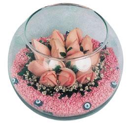 Mardin internetten çiçek satışı  cam fanus içerisinde 10 adet gül