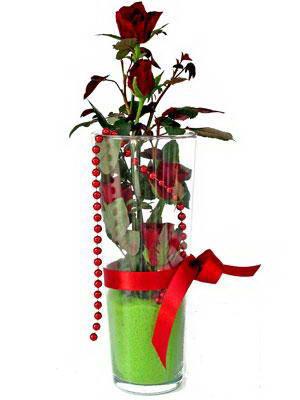 Mardin online çiçek gönderme sipariş  Cam yada mika içerisinde 9 adet kirmizi gül - sevdiklerinize özel