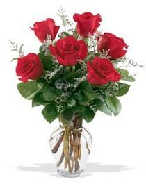 Mardin çiçek gönderme sitemiz güvenlidir  7 adet kirmizi gül cam yada mika vazoda sevenlere