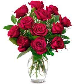 Mardin online çiçek gönderme sipariş  1 düzine kirmizi gül sevenlere özel vazo gülleri