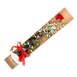 Mardin çiçek , çiçekçi , çiçekçilik  Kutuda tek 1 adet kirmizi gül çiçegi