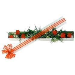 Mardin çiçek siparişi sitesi  6 adet kirmizi gül kutu içerisinde