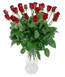 Mardin çiçekçi telefonları  11 adet kimizi gülün ihtisami cam yada mika vazo modeli