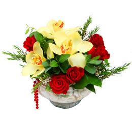 Mardin çiçek gönderme  1 adet orkide 5 adet gül cam yada mikada