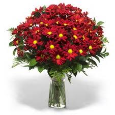 Mardin çiçek yolla  Kir çiçekleri cam yada mika vazo içinde